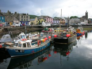 Fisheries - Tarbet Harbour - creel boats (c) Claire Pescod (best pic) - Full permissions